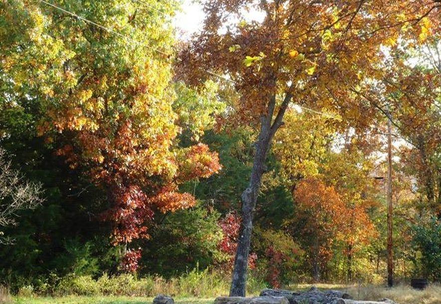 11371 North State Highway 125 Bradleyville, MO 65614 - Photo 39