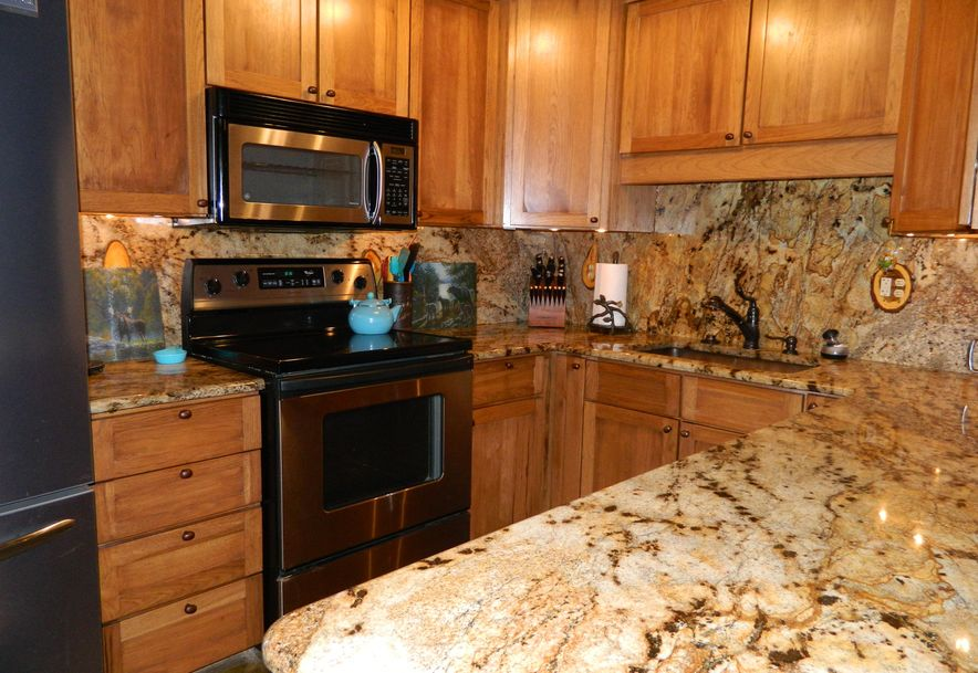 253 Lakeland Avenue Hollister, MO 65672 - Photo 8