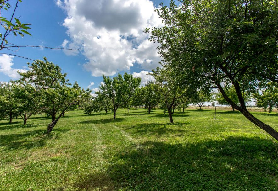 2848 North Farm Rd 17 Ash Grove, MO 65604 - Photo 101