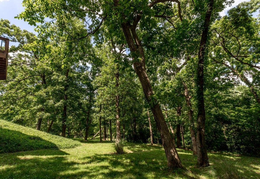 2848 North Farm Rd 17 Ash Grove, MO 65604 - Photo 87