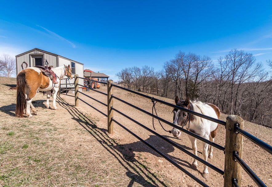 484 Hidden Springs Lane Reeds Spring, MO 65737 - Photo 11