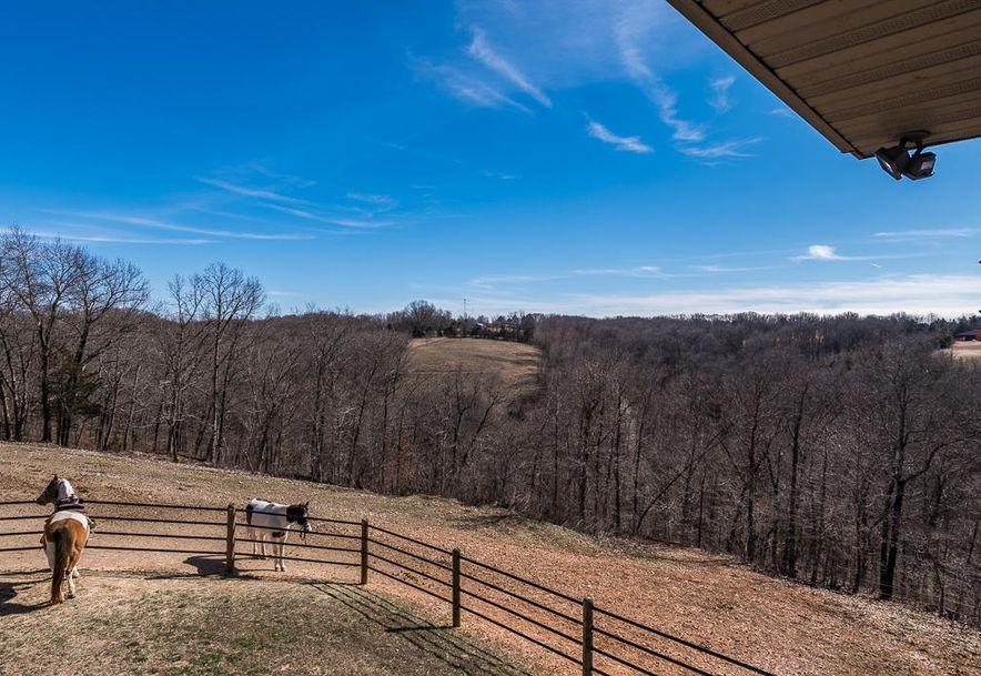 484 Hidden Springs Lane Reeds Spring, MO 65737 - Photo 13