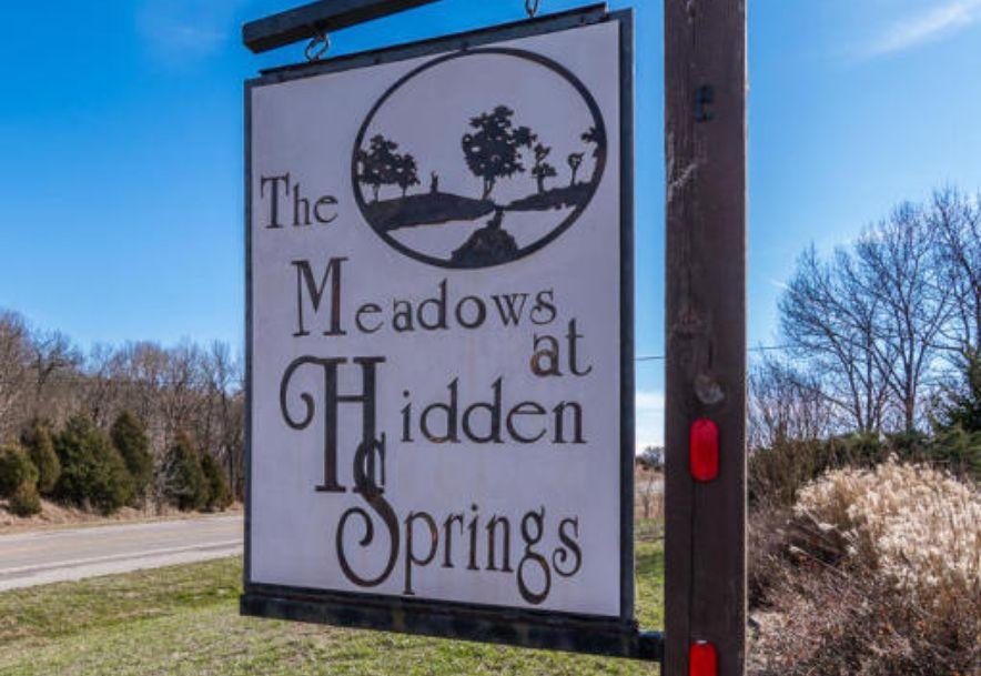 484 Hidden Springs Lane Reeds Spring, MO 65737 - Photo 55