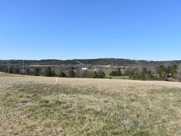 Tbd 2.5 Ac Wellington Parkway Kirbyville, MO 65679 - Image 1