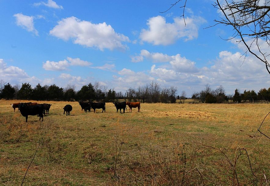 Tbd West Farm Road 104 Willard, MO 65781 - Photo 18