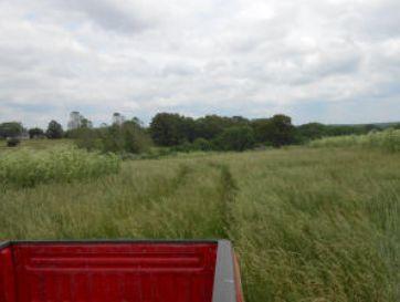1234 Farm Road 2172 Cassville, MO 65625 - Image