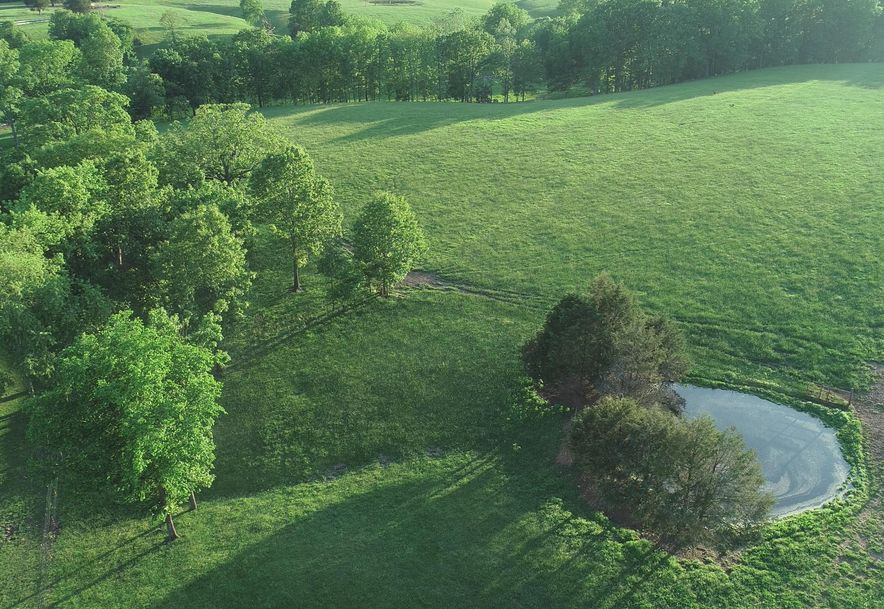 141 Buckbrush Seymour, MO 65746 - Photo 47