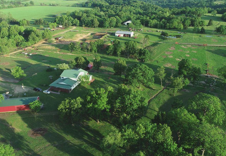 141 Buckbrush Seymour, MO 65746 - Photo 36