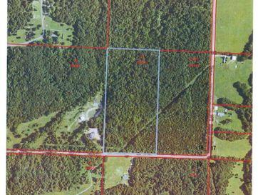 0 Switchgrass Road Fordland, MO 65652 - Image 1
