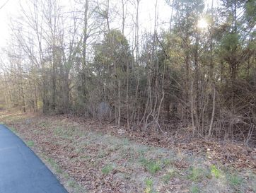 Lot 6 Stoneshire Drive Highlandville, MO 65669 - Image 1