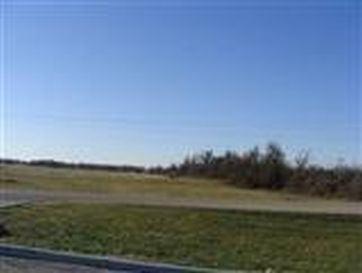 Tract #1 South Hwy 39 Mt Vernon, MO 65712 - Image