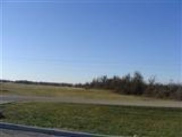 Tract #2 South Hwy 39 Mt Vernon, MO 65712 - Image