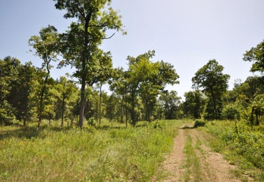 Tbd Emory Creek Boulevard Branson, MO 65616 - Photo 5