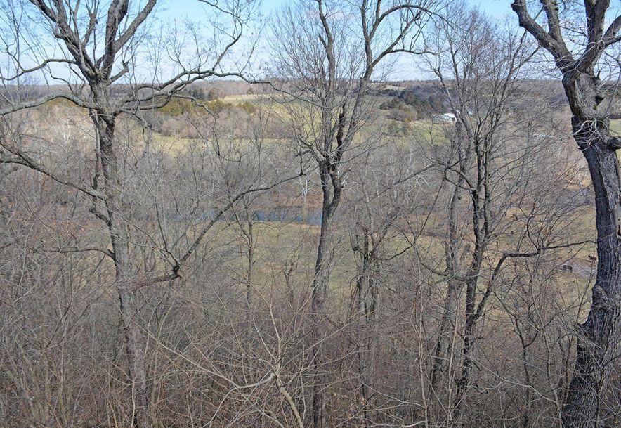 6529 North Farm Road 171 Springfield, MO 65803 - Photo 53