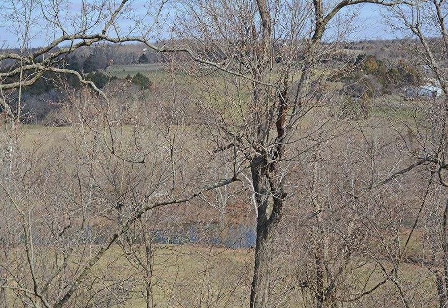 6529 North Farm Road 171 Springfield, MO 65803 - Photo 55