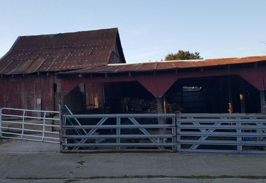 4772 West Farm Rd 54 Willard, MO 65781 - Photo 36