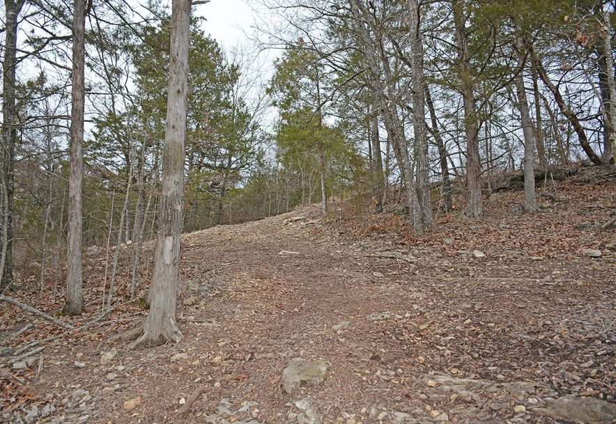 Lot 40 Pinnacle Shores Lampe, MO 65681 - Photo 6