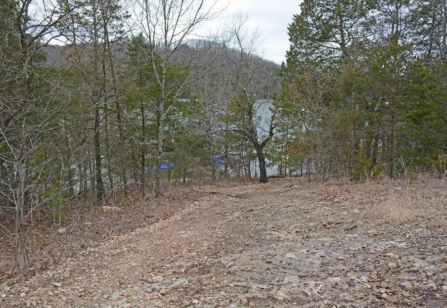 Lot 40 Pinnacle Shores Lampe, MO 65681 - Photo 8