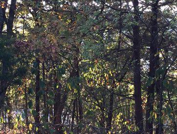 Tbd Lakeview Drive Branson, MO 65616 - Image 1