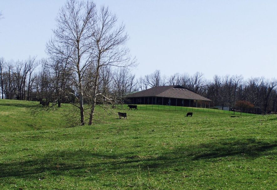 5001 Highway H Halfway, MO 65663 - Photo 2
