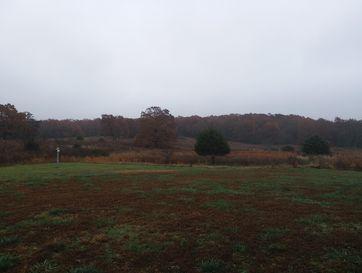 Tbd Farm Road 2040 Crane, MO 65633 - Image 1