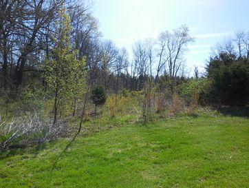 0 East Wildflower Lane Rogersville, MO 65742 - Image