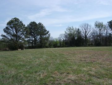 Tbd South Highway 95 Mountain Grove, MO 65711 - Image
