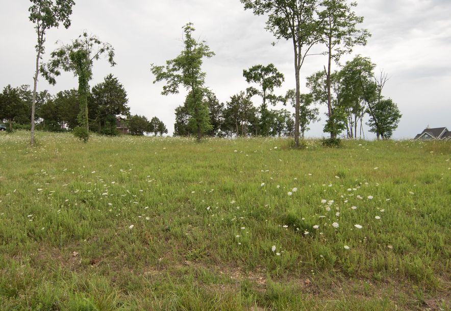 Lot 27 Bread Tray Mountain Estates Lampe, MO 65681 - Photo 2