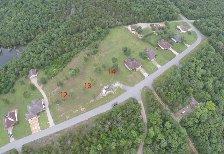 Lot 14 Uniqueville Lane Lampe, MO 65681 - Photo 8