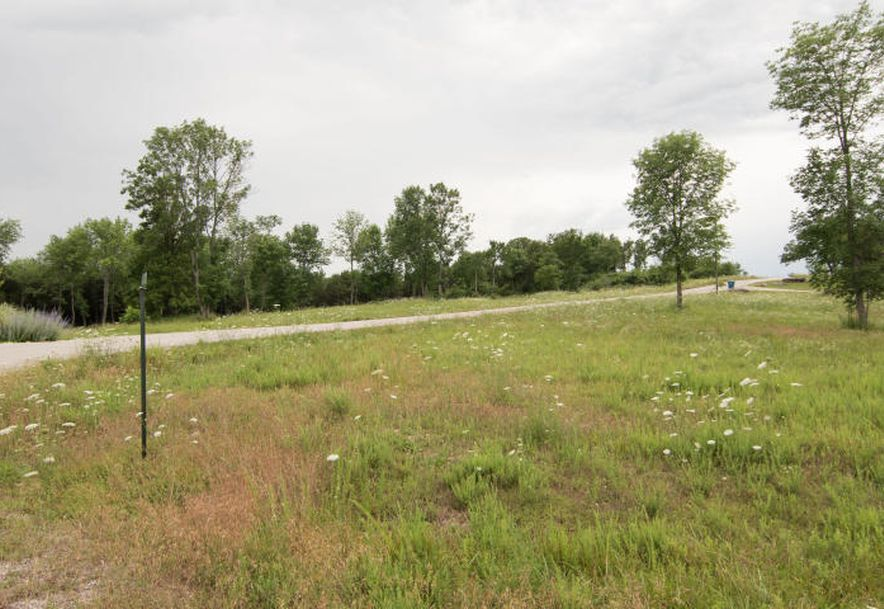 Lot 36 Bread Tray Mountain Estates Lampe, MO 65681 - Photo 2