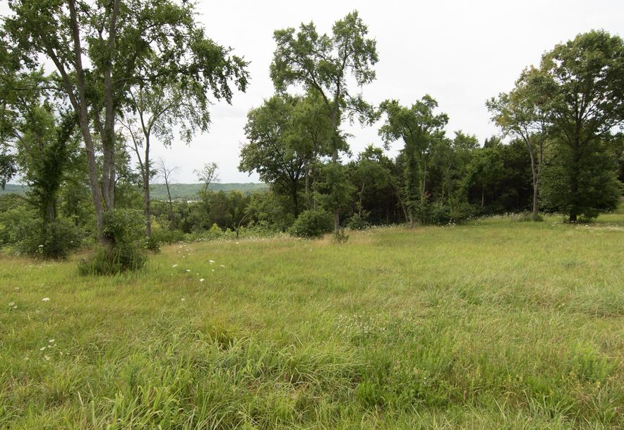 Lot 18 Bread Tray Mountain Estates Lampe, MO 65681 - Photo 1