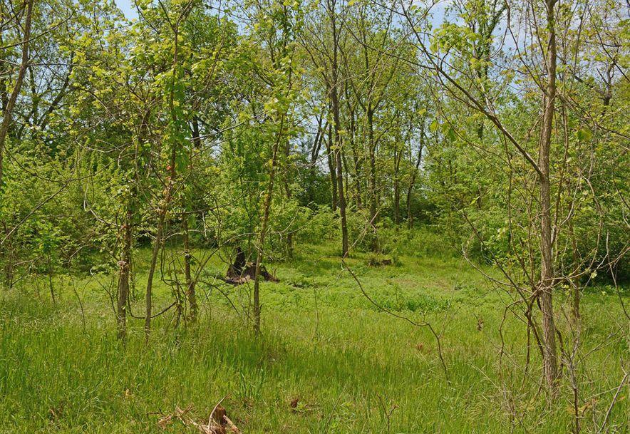 6105 South Farm Road 193 Rogersville, MO 65742 - Photo 11