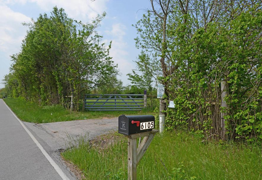 6105 South Farm Road 193 Rogersville, MO 65742 - Photo 37