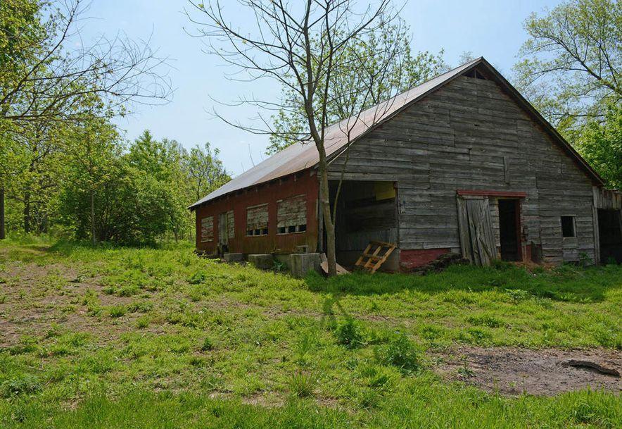 6105 South Farm Road 193 Rogersville, MO 65742 - Photo 7