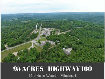 Tbd Us-160 Merriam Woods, MO 65740 - Image 1
