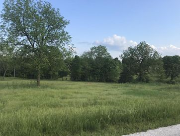 Lot 10 Woodland Park Drive Clever, MO 65631 - Image 1