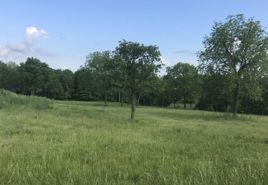 Lot 10 Woodland Park Drive Clever, MO 65631 - Photo 2