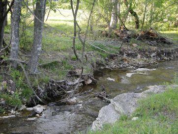 2670 County Road 132 Wasola, MO 65773 - Image 1