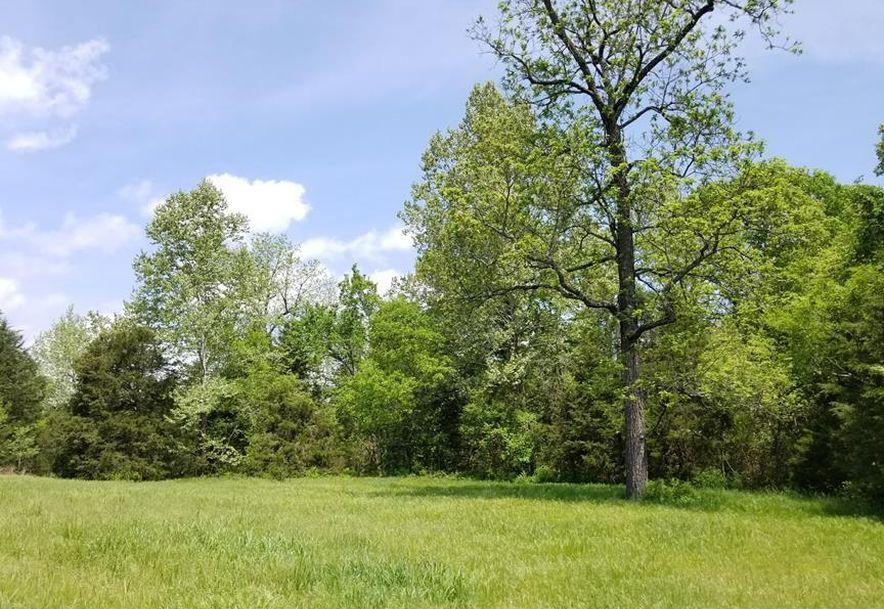 941 Delp Drive Gainesville, MO 65655 - Photo 12
