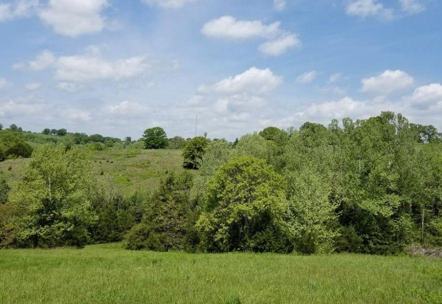 941 Delp Drive Gainesville, MO 65655 - Photo 87