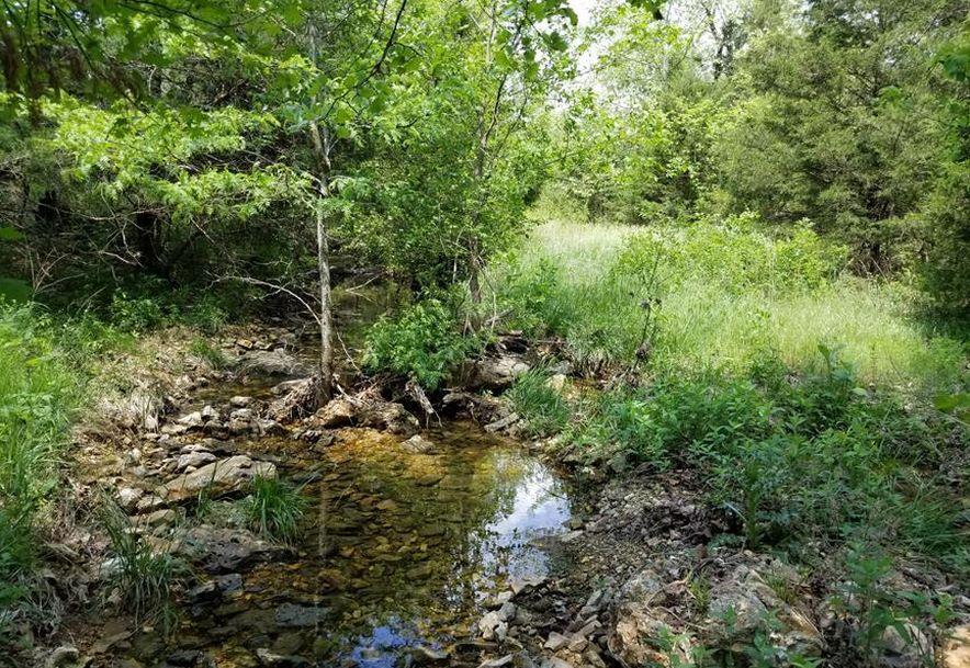 941 Delp Drive Gainesville, MO 65655 - Photo 99