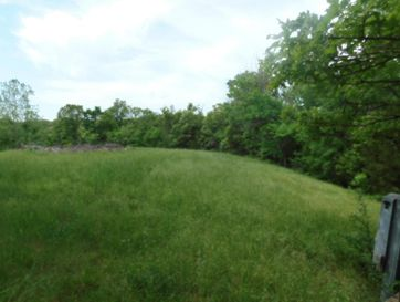 Tbd 61,68 Deer Trail / Skyview Drive Pineville, MO 64856 - Image 1
