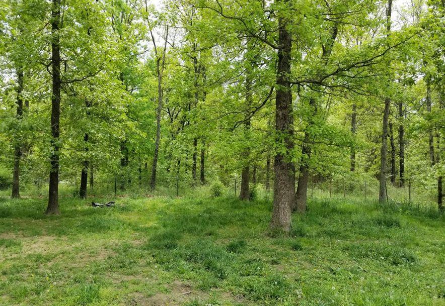 10587 North Farm Rd 185 Fair Grove, MO 65648 - Photo 11