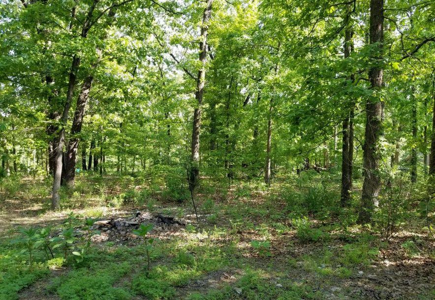 10587 North Farm Rd 185 Fair Grove, MO 65648 - Photo 37