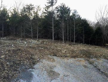 Tbd Chisholm Trail Forsyth, MO 65653 - Image 1