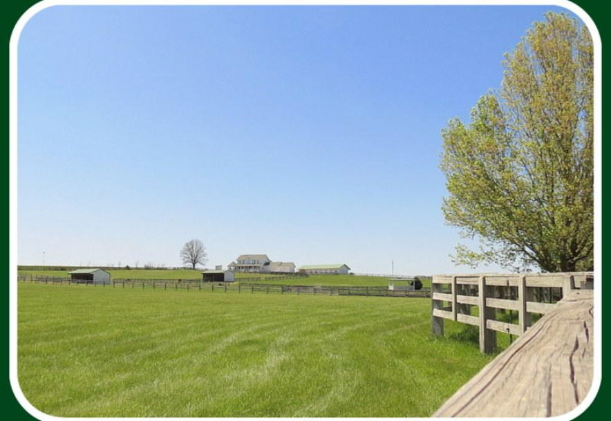 373 Holder Road Clever, MO 65631 - Photo 89