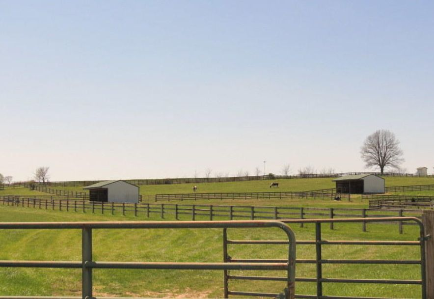 373 Holder Road Clever, MO 65631 - Photo 91