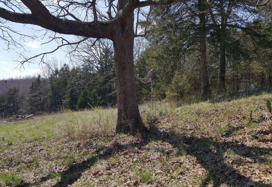 8346 State Hwy Z Hartville, MO 65667 - Photo 5