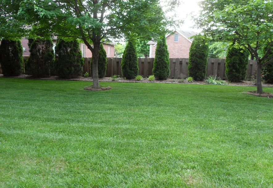 1411 North Chapel Drive Springfield, MO 65802 - Photo 53