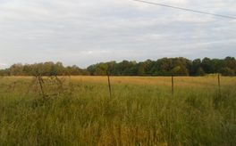 Photo Of Tbd Shupbach Road Clever, MO 65631